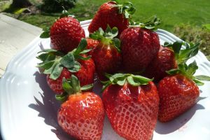 Strawberries provide lots of good nutrition and can be cancer fighters.